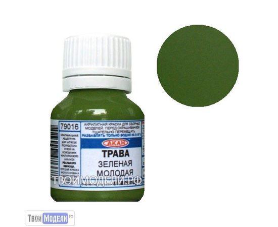 Необходимое для моделей АКАН 79016 Молодая трава, желтовато-зелёная # Краска tm00863 купить в твоимодели.рф